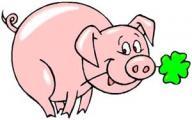 gluecksschwein1.jpg