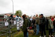 Bauermarkt Viöl 13051002.JPG
