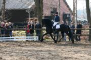 Marschhorst 20031173.JPG