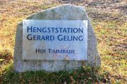 Hengsstation Geling 12111108.JPG