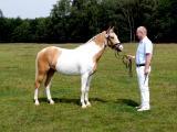 She de Lux Hoejgard 07071203.JPG