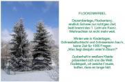 2008 Flockenwirbel Bäume.jpg