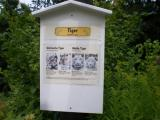 Tiger-Tafel.1a.jpg