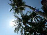 Sunrise auf PhiPhi 3.2009.JPG