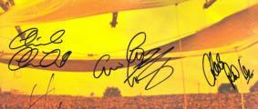 Woodstock signed by TYA_800_339.jpg
