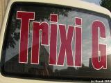 Trixi G 18.06.10 Kunsthof Gohlis.jpg