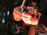 Hans die Geige 01.05.10 Augustusgarten Dresden 012.jpg