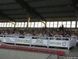KARUSSELL 10.06.11 Berlin-Karlshorst (19).jpg