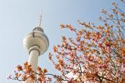 00142_fernseturm_fruehling.jpg