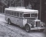 Foto Bus Straße.jpg