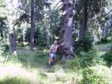 Harz September 2008 (31).JPG