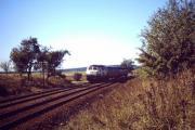 2011-01-16_4-800.JPG