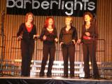 Barberlights Konzert (10).jpg