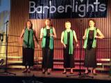 Barberlights Konzert (59).jpg