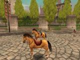 Pferd ohne Reiter.JPG