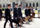 Hundeführer-Wien-Gruppe2.JPG