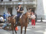 berittener~Polizist.jpg