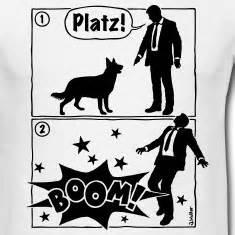 platzboomdog.jpg