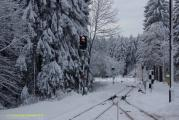 Harz 3.12.10 Bei Drei Annen Hohne (15).jpg