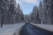 Harz 3.12.10 Bei Drei Annen Hohne (1).jpg