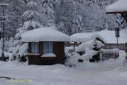 Harz 3.12.10 Bei Drei Annen Hohne (11).jpg