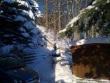 Winter 2010 004.jpg