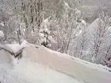 Winter 2010 013.jpg