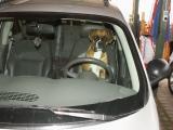 Fahrer Vorg.jpg