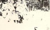 Wintertarn 001.jpg