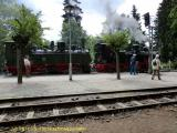 Harzerschmalspurbahn Juli 2011 (3).jpeg
