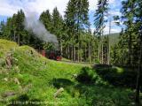 Harzerschmalspurbahn Juli 2011 (14).jpeg