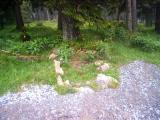 Soldatengrab, oberhalb Oberer Kreuzung.JPG