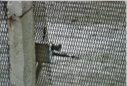 Minensperre 501 in Bereich Ifta etwa 1983 - von Willi -.jpg