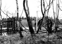 Helmstedt-1978.jpg