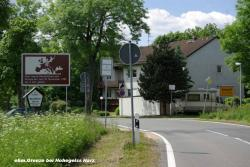 24.6.10 eh.Grenze b.Hohegeiss-Harz (12).JPG