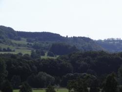 RIF_3305Füst Unterwaid aus Richtung Dippach.JPG
