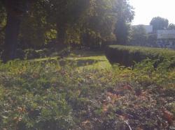 Friedhof Gartenstraße