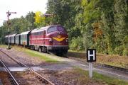 Durchfahrt Mosigkau DLr 24453 - Kopie.JPG