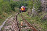 Hund und Lok an der Burg 1.JPG