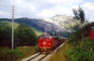 DI3.614 mit Güterzug.jpg