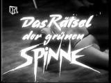 Georg_Spinne1.jpg