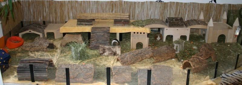 halte und pflegetips meerschweinchen gehege selber bauen. Black Bedroom Furniture Sets. Home Design Ideas