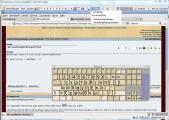 Tastaturbelegung und Bildschirmtastatur funktioniert wieder unter Ubuntu 11.04.jpg