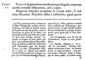 callitriche_Plinius_Buch-25_A.png