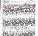 decussis_Thesaurus_1.jpg