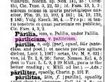 Parilicius_2.jpg