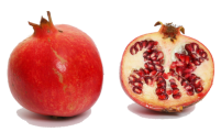 Granatapfel.png