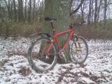erster Schnee.JPG