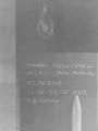 IMGP8456.png