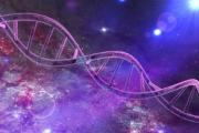 Schamane-DNA-4-600x400.png